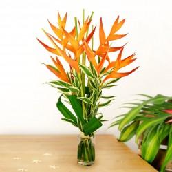 Bouquet Soleil